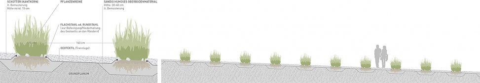 planting concept | sections